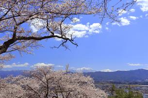 春日公園の写真素材 [FYI04624673]