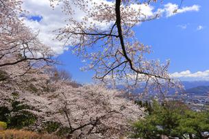 春日公園の写真素材 [FYI04624674]