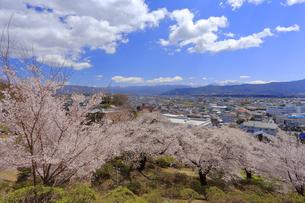 春日公園の写真素材 [FYI04624675]