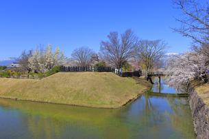 松本城公園の写真素材 [FYI04624679]