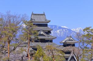 松本城公園の写真素材 [FYI04624681]