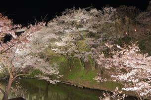 上田城跡公園の写真素材 [FYI04624688]