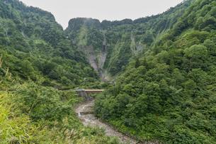 夏の称名滝への道の写真素材 [FYI04624934]