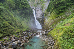 夏の称名滝の写真素材 [FYI04624935]