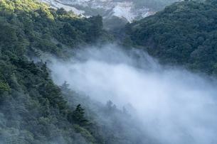 駒草平展望台から見る霧の不帰の滝の写真素材 [FYI04624954]