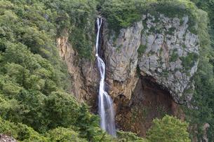 駒草平展望台から見る不帰の滝の写真素材 [FYI04624956]