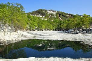5月 新緑と残雪の鎌池の写真素材 [FYI04624970]