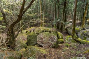 名草巨石群の写真素材 [FYI04625133]