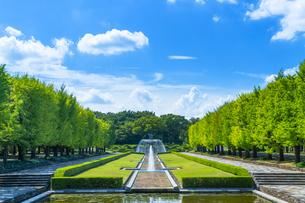 東京都 昭和記念公園の写真素材 [FYI04625314]
