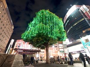 東京都 赤羽駅東口の写真素材 [FYI04625870]