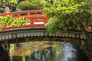 上賀茂神社 楼門前の御物忌川と玉橋の写真素材 [FYI04625950]