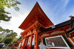 上賀茂神社 天皇陛下御即位を祝う楼門の写真素材 [FYI04625967]
