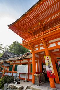 上賀茂神社 天皇陛下御即位を祝う楼門の写真素材 [FYI04625969]