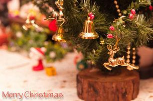 クリスマスカードの写真素材 [FYI04625972]