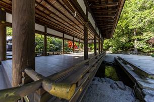 橋殿とその下を流れる御手洗川の写真素材 [FYI04625988]