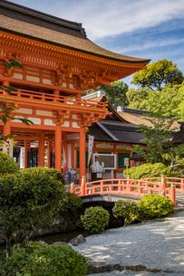 上賀茂神社 橋殿側から眺める玉橋と楼門の写真素材 [FYI04625991]