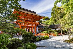上賀茂神社 橋殿側から眺める玉橋と楼門の写真素材 [FYI04625994]