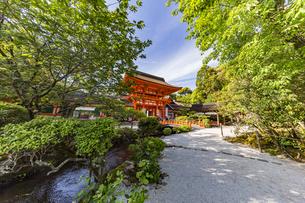 上賀茂神社 橋殿側から眺める玉橋と楼門の写真素材 [FYI04625995]