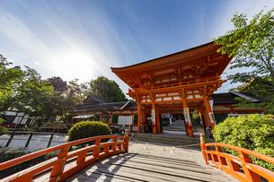 上賀茂神社 玉橋から眺める楼門の写真素材 [FYI04625997]