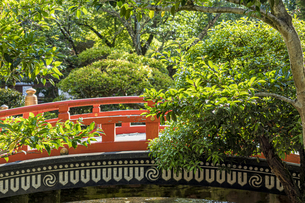 上賀茂神社 楼門前の玉橋の写真素材 [FYI04625998]