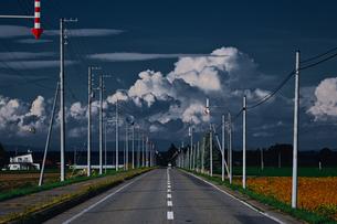夏の北海道の写真素材 [FYI04626141]