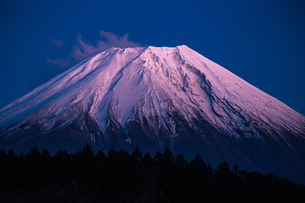 富士山の写真素材 [FYI04626164]