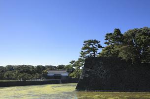 皇居の蛤濠の写真素材 [FYI04626643]