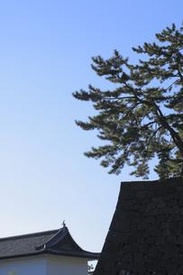 皇居の桜田門の写真素材 [FYI04626654]