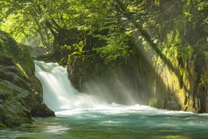 初夏の菊池渓谷の写真素材 [FYI04626892]