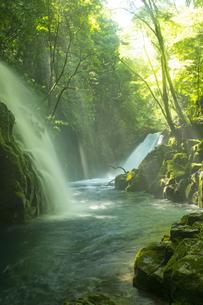 初夏の菊池渓谷の写真素材 [FYI04626893]