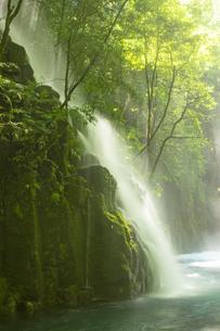 初夏の菊池渓谷の写真素材 [FYI04626895]
