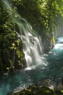 初夏の菊池渓谷の写真素材 [FYI04626899]