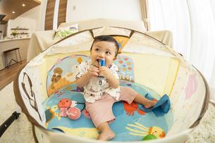 ベビードームで遊ぶ赤ちゃんの写真素材 [FYI04626968]