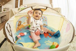 ベビードームで遊ぶ赤ちゃんの写真素材 [FYI04626970]