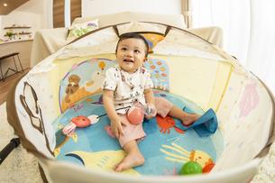ベビードームで遊ぶ赤ちゃんの写真素材 [FYI04626971]