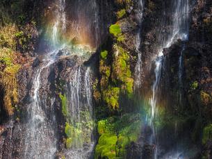白糸の滝の写真素材 [FYI04627062]