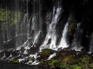 白糸の滝の写真素材 [FYI04627063]