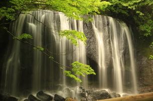 福島県にある滝の写真素材 [FYI04627115]