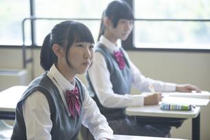 勉強する女子高生の写真素材 [FYI04627206]