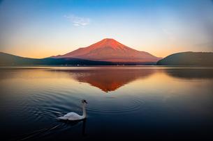 富士山の写真素材 [FYI04627244]