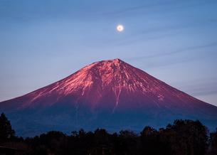 富士山の写真素材 [FYI04627251]