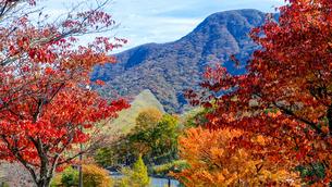 由布岳パーキングエリアからの紅葉(大分自動車道)の写真素材 [FYI04627322]
