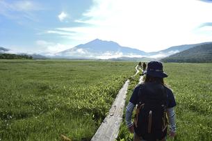 初夏の湿原でハイキングする女性の写真素材 [FYI04627383]
