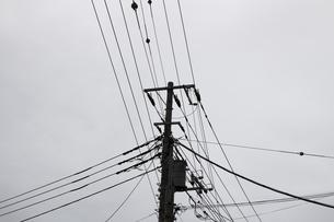 沢山の送電線を支える電柱のモノクロ写真の写真素材 [FYI04627436]