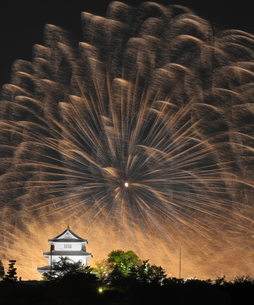 Fireworks covering Marugame Castleの写真素材 [FYI04627621]