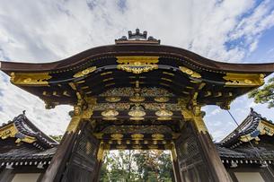 京都二条城 豪華絢爛な唐門の写真素材 [FYI04627643]