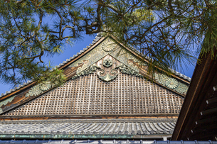 京都二条城 国宝二の丸御殿の写真素材 [FYI04627653]