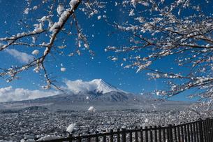 富士山の写真素材 [FYI04627727]