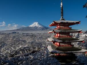富士山の写真素材 [FYI04627730]