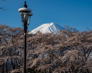 富士山の写真素材 [FYI04627735]